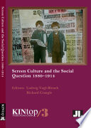 Screen culture and the social question, 1880-1914 /