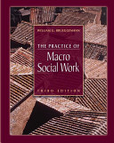 The practice of macro social work /