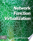 Network Function Virtualization /