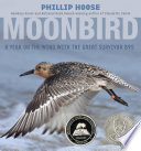 Moonbird : a year on the wind with the great survivor B95 /