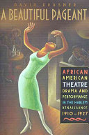 A beautiful pageant : African American theatre, drama, and performance in the Harlem Renaissance, 1910-1927 /
